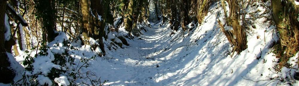 Holmer Green in snow