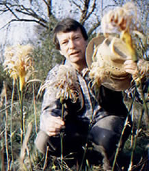 Stuart King with several of his gypsy flowers